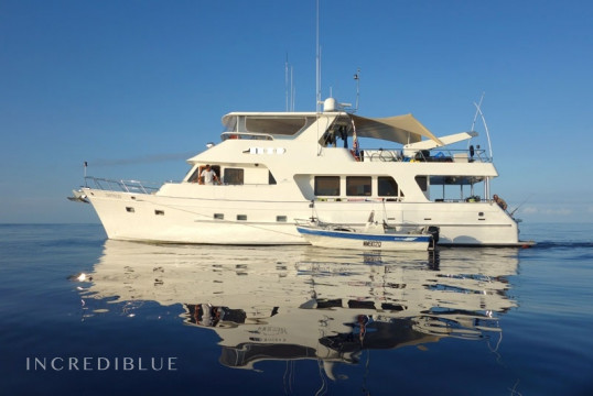 Yacht rent Custom made 1 in Half Moon Bay Marina, Cairns
